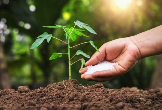 Calcium & Minerals for your soil