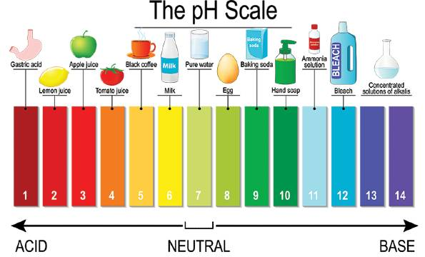 What pH means for your soil